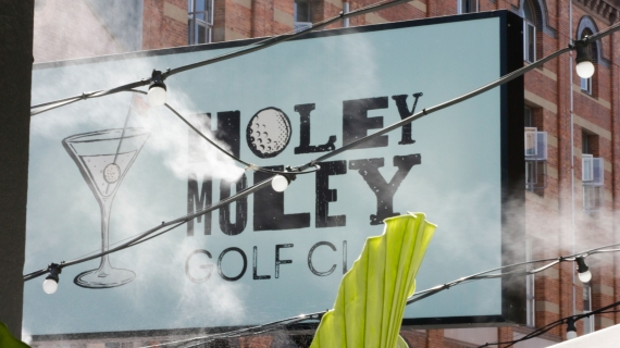 Holey Moley Signage